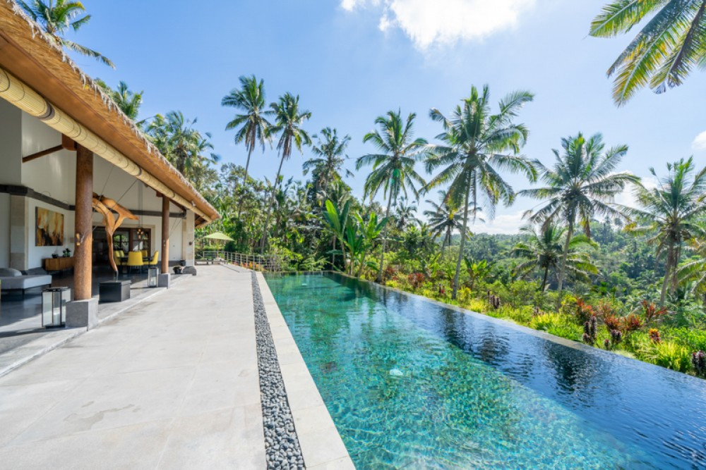 Ubud villas with a private pool and stunning view
