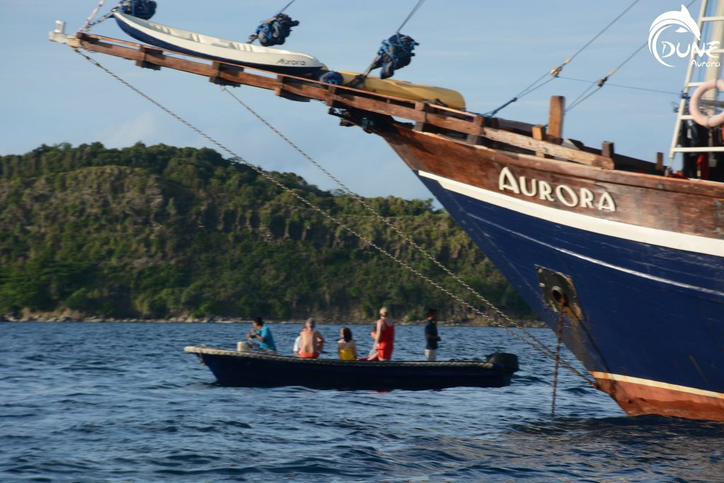 Consider Going for Dive Trips in Bali with Private Yacht Charter